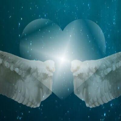 Heel je hart